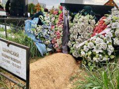 Заброшенная могила Владимира Шаинского. Фото: © «Экспресс газета»