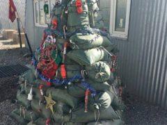 …ну, или из мешков с боеприпасами, если вы пехотинец американской армии… Фото: соцсети