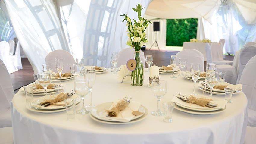 Фореста Фестиваль Парк, свадьба
