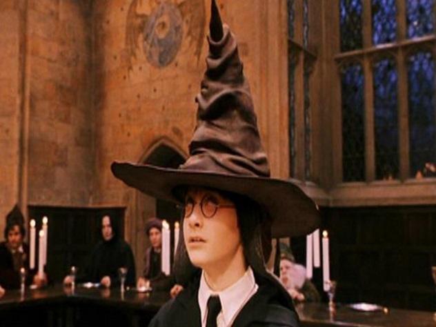 Паук в виде шляпы из Гарри Поттера живет в Индии