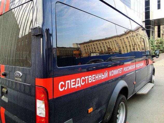 На Урале задержали хозяев собак, загрызших школьницу