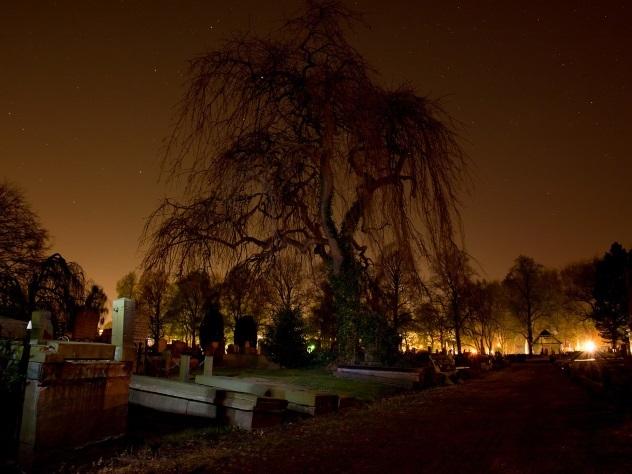 На родине вампиров нашли таинственную могилу