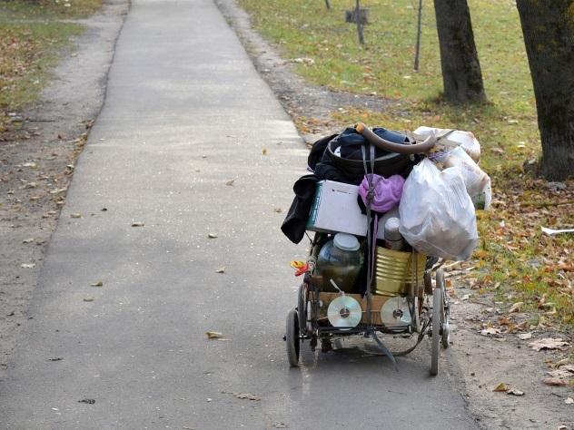 Избитому бродяге и раненому псу собрали полмиллиона рублей