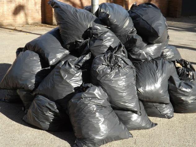 Следователь МВД выбросил человеческие останки в мусорный бак