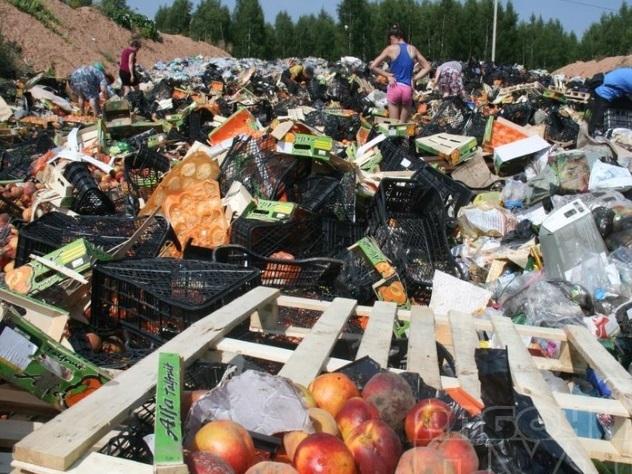 Способы уничтожения продуктов питания собственный