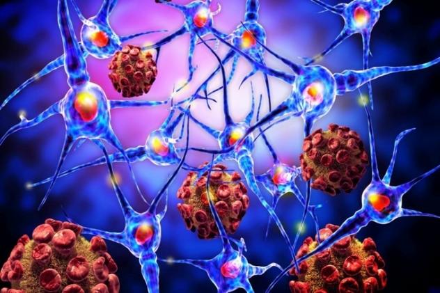 Ученые создали нанокиборгов для борьбы сраком