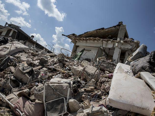 В Италии через 5 дней после землетрясения из-под завалов спасли  кошку Радость