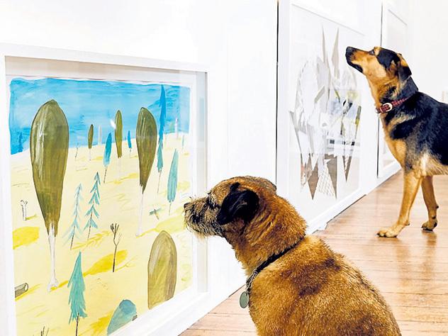 Собаки принюхались к искусству