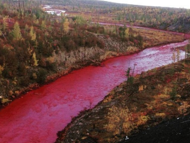 «Норникель» могут наказать зазагрязнение реки вКрасноярском крае