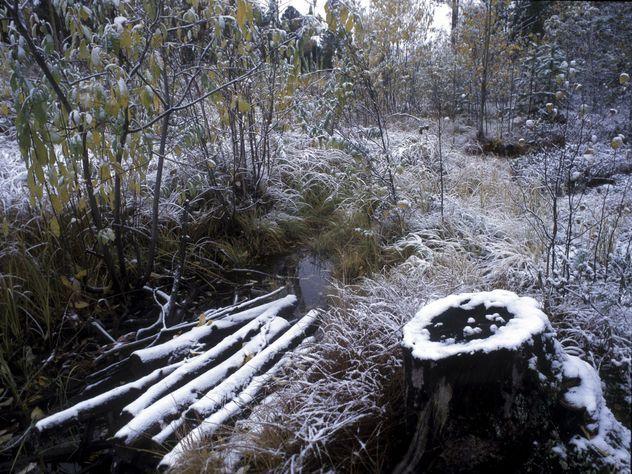 Таинственный объект отыскали неподалеку от перевала Дятлова