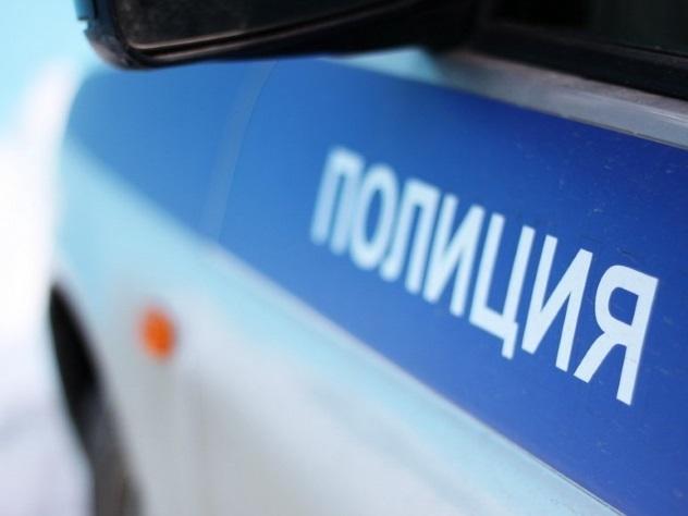 ВКоми 70-летний нарушитель попытался отобрать пистолет уполицейского
