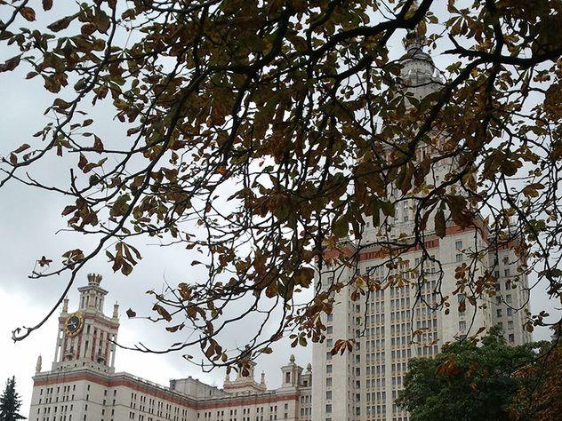 Аспирант выпал с 23 этажа высотки МГУ и чудом выжил
