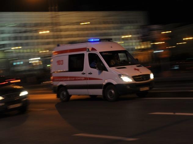 Семь человек погибли в итоге столкновения микроавтобуса сгрузовиками вПодмосковье