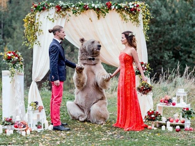 Свадьба по-русски: молодых поженил медведь