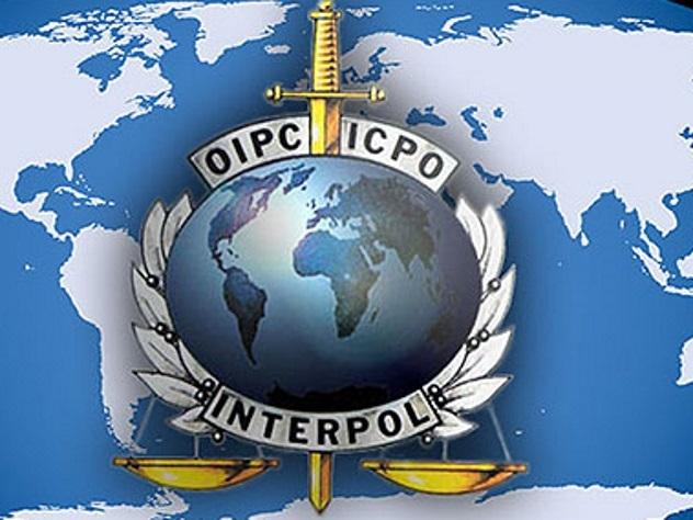 Житель россии будет баллотироваться напост вице-президента Интерпола