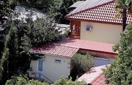 Верхний коттедж с покатой крышей принадлежит семье КОСТЯНЫХ, а постройка ниже - с плоской - актёру