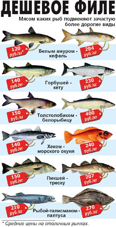 почему не клюет рыба