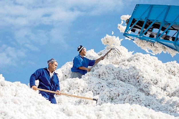 ...исчислялись миллионами тонн. Фото с сайта fergananews.com