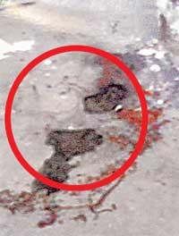 СЛЕДЫ ПРЕСТУПЛЕНИЯ: кровь на асфальте у подъезда, сфотографированная год назад