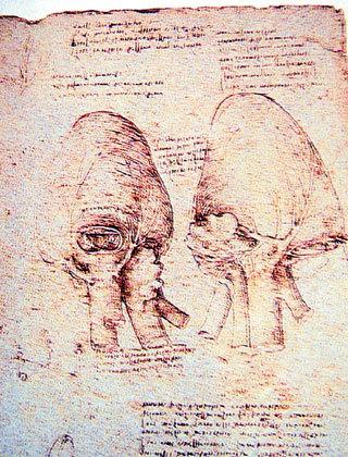 После перевода таинственные рукописи гения...