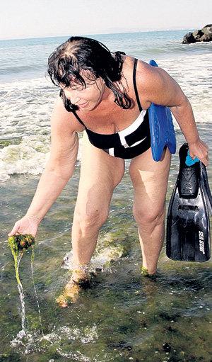 ...и собрала немного водорослей
