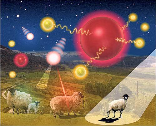 Пришельцы нападают на британских овец