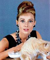 Одри ХЕПБЕРН признана самой красивой. Многие мужчины мечтали ее приласкать, как кошечкуОдри ХЕПБЕРН признана самой красивой. Многие мужчины мечтали ее приласкать, как кошечку