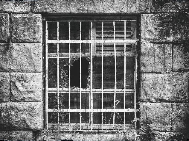 В Подмосковье 92-летнюю пенсионерку три недели держали в плену