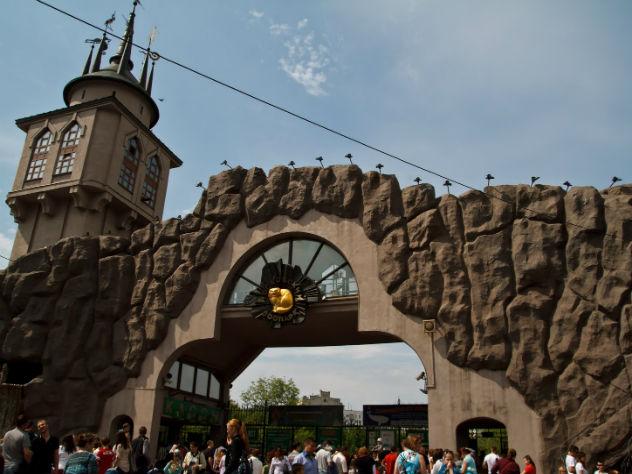 В Московском зоопарке начнут регистрировать браки