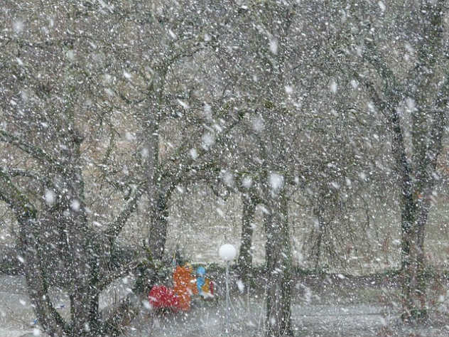 Из-за снегопада в ЦФО остаются без света десятки тысяч россиян
