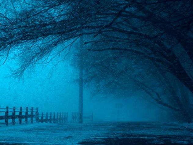 В Москве ожидается повышенный уровень погодной опасности