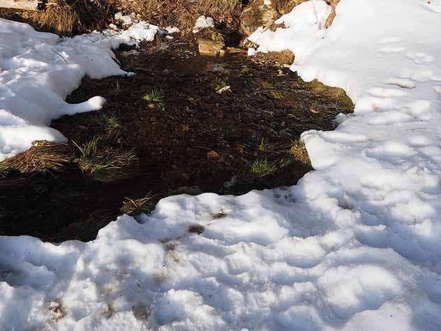 Трехлетняя девочка утонула в яме для водопоя домашних животных