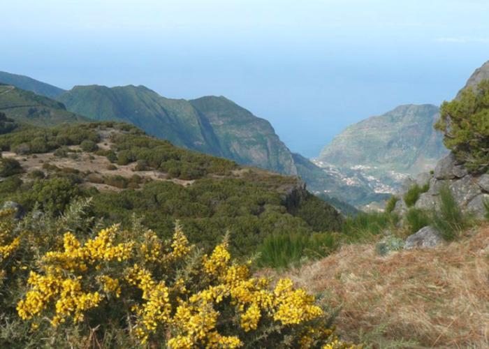 Мадейра славится живописными видами