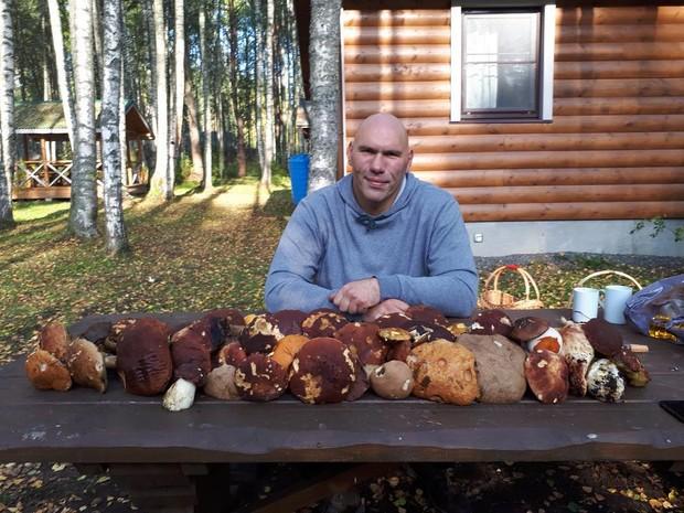 Куда поехать за грибами. Фото: официальная страница Николая Валуева в инстаграме
