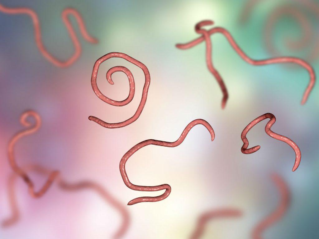 Гельмилайн для очистки организма от паразитов в Вичуге